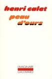 Peau d'ours - Notes pour un roman