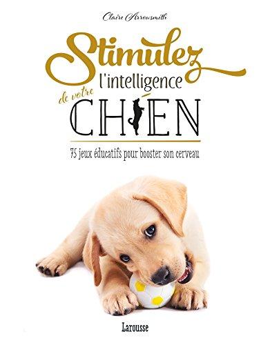 Stimulez l'intelligence de votre chien