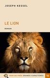Le Lion - Voir de près - 02/09/2019