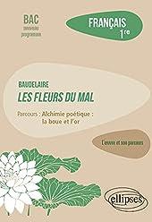 Français, Première. L'oeuvre et son parcours - Baudelaire, Les Fleurs du Mal, parcours