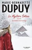 Le Mystère Soline Tome 3 - Un Chalet Sous La Neige