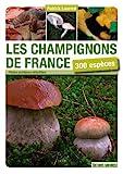 Les champignons de France - 300 espèces