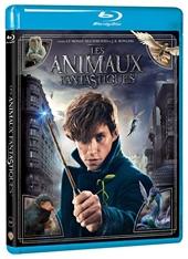 Les Animaux Fantastiques Blu-ray - Le monde des Sorciers de J.K. Rowling - Blu-ray