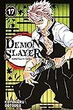Demon Slayer - Tome 17