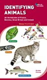 Identifying animals - All Vertebrates of France, Benelux, Great Britain and Ireland. Bilingual French-English. - Biotope - 02/11/2012
