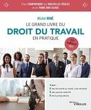 Le grand livre du droit du travail en pratique: 31e édition 2022 - 2023