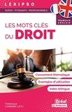 Les mots clés du droit – Français-Anglais - Classement thématique, exemples d'utilisation, index bilingue