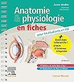 Anatomie et physiologie en fiches pour les étudiants en IFSI - Avec un site Internet d'entraînements interactifs