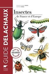 Insectes de France et d'Europe de Wolfgang Dierl