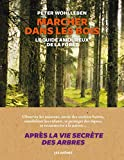 Marcher dans les bois - Le guide amoureux de la forêt