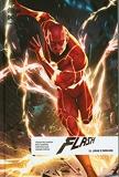 Flash Rebirth - Tome 11