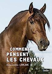 Comment pensent les chevaux de Michel-Antoine Leblanc