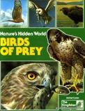 Nature's Hidden World - Birds of Prey