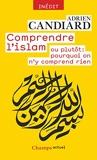 Comprendre l'Islam - ou plutôt - Pourquoi on n'y comprend rien