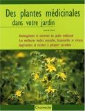 Des plantes médicinales dans votre jardin