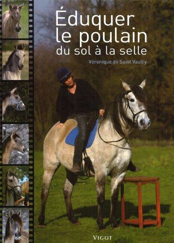Eduquer Le Poulain Du Sol A La Selle