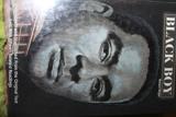 Black Boy - Everbind Anthologies - 01/01/2003