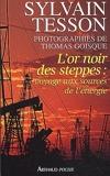 L'or Noir DES Steppes - Voyage Aux Sources De L'Energie (French Edition) by Sylvain Tesson(2012-04-25) - Editions 84 - 01/01/2012