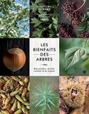 Les bienfaits des arbres - Reconnaître, récolter, cuisiner et se soigner