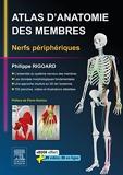 Atlas d'anatomie des membres - Nerfs périphériques