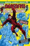 Daredevil - L'intégrale 1973-1974 (T09)