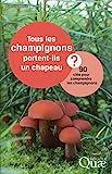 Tous les champignons portent-ils un chapeau ? 90 clés pour comprendre les champignons
