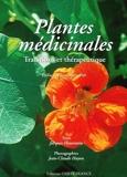 Plantes médicinales - Traditions et thérapeutique