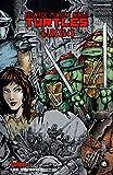 Les Origines - Les Tortues Ninja - TMNT Classics, T1 - Format Kindle - 19,99 €