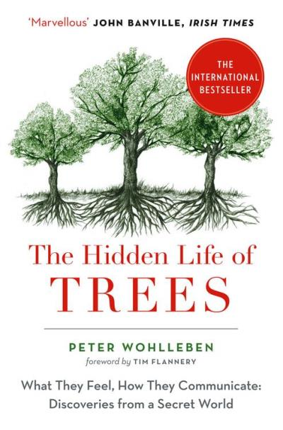 The Hidden Life of Trees: What They Feel, How They Communicate - 9780008218447 - 7,89 €