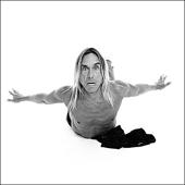 Angel, Iggy Pop de Xavier Martin